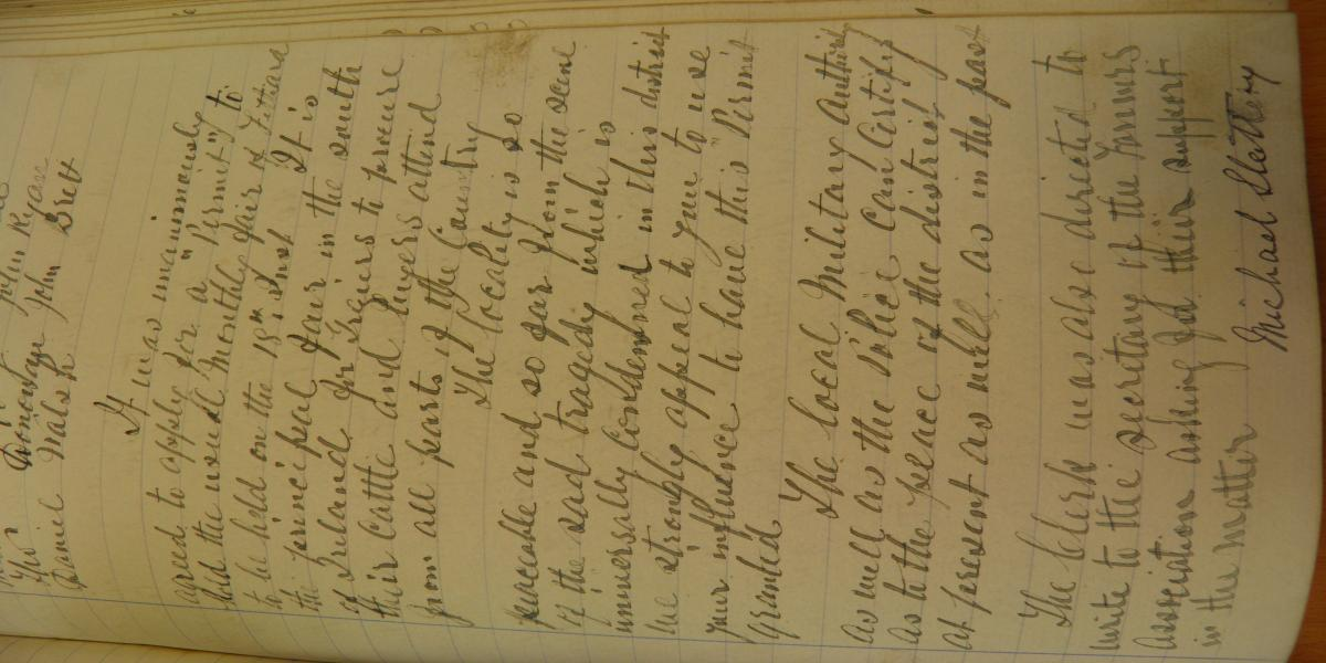 Minutes of Fethard Town Commissioners, 7th February, 1919