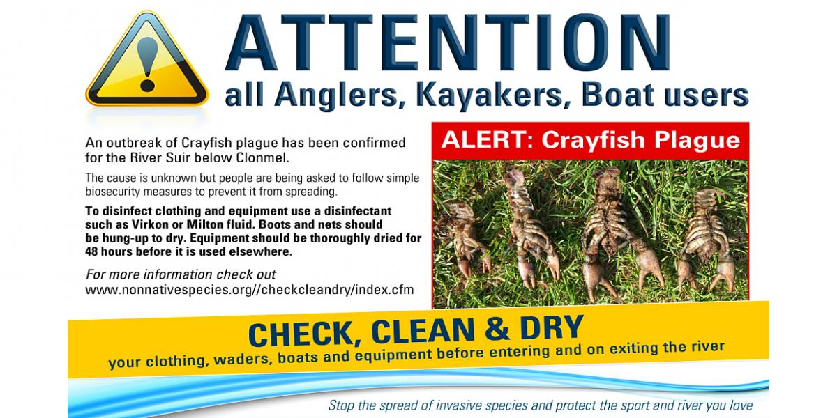 'Check, Clean and Dry'- take precautions to limit an outbreak of Crayfish Plague